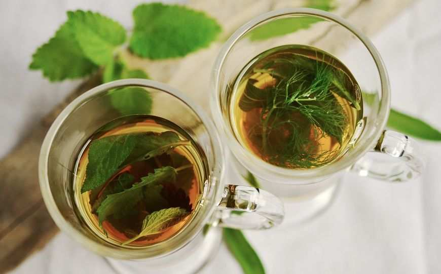 Najwyższej jakości zioła lecznicze